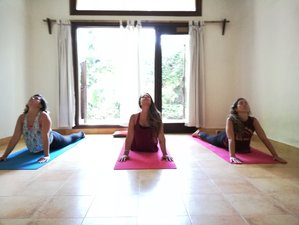 5 Days Chakra Awareness: Healing & Balancing - Yoga, Meditation Retreat, Delhi, India