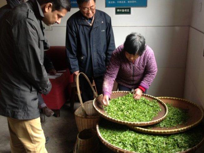 13 Days China Tea Tour