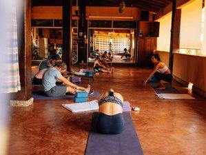 7 Day Healthy Detox Juice, Massage, Meditation and Yoga Retreat in Puerto Escondido, Oaxaca