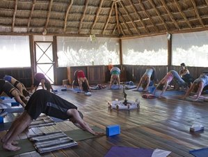 6 Blissful Days Yoga Retreat in the Mexican Caribe