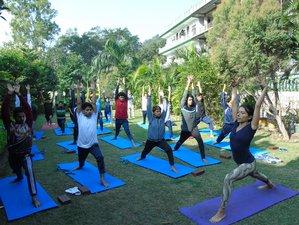25 días 200 horas profesorado de yoga multiestilo en Rishikesh, India