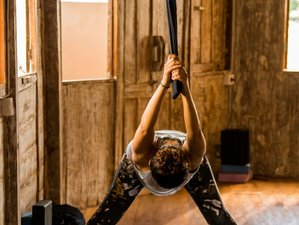 3 Days Aerial and Alignment based Yoga Workshop in Ubud, Bali, Indonesia