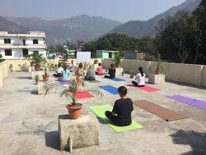 7 jours en stage de yoga et de méditation pour débutants en Inde