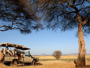5 Days Wildlife Camping Safari Tour in Tanzania