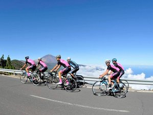 8 Days New Riders Volcano Cycling Tour and Training Camp in Tenerife, Spain