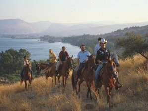 3 Days Wonderful Horse Riding Holiday over the Sea of Galilee, Israel