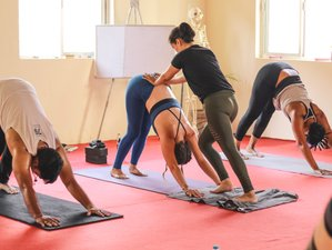 28 Day 200-Hour Multi Style Ashtanga Vinyasa & Vinyasa Flow Yoga Teacher Training in Rishikesh