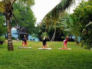 14 Days Ayurveda and Yoga Retreat in Mangrove Villa Bentota, Sri Lanka