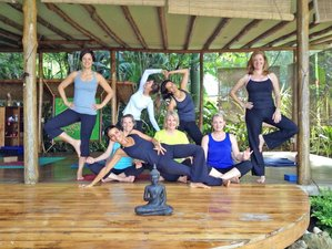 7 Days Yoga and Surf Camp in Santa Teresa, Costa Rica