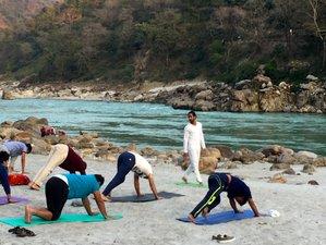 28 Days Divine Ganga Meditation and Yoga Retreat Rishikesh, India