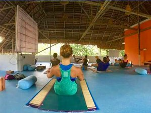 28 Day 200-Hour of Ashtanga Vinyasa and Hatha Yoga Teacher Training in Kerala