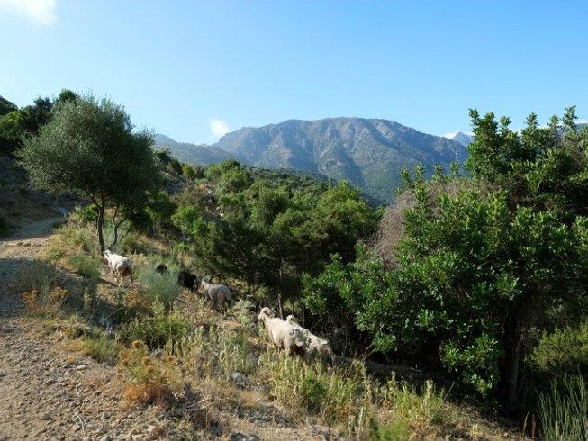 8 Tage Meditation und Yoga Retreat in Andalusien, Spanien