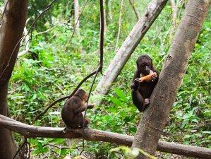 2 Days Short Wildlife Tour in Phong Nha Ke Bang National Park, Vietnam
