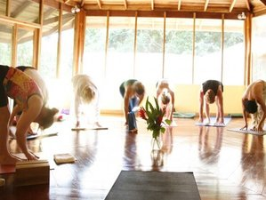 4 Day Private Wellness and Yoga Retreat in the Caribbean Coast of Puerto Viejo, Limon