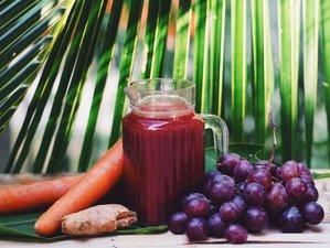 29 Days Premium Detox Juice Cleansing and Yoga Holiday in Koh Phangan, Thailand