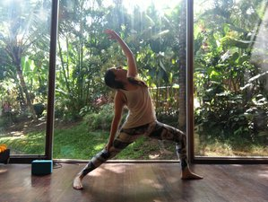 4 Day Personalized Raw Food, Meditation, and Yoga Holiday Ubud, Bali