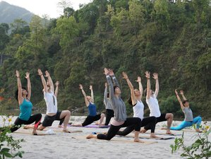 23 Day 200-Hour Ayurveda and Yoga Teacher Training in Rishikesh