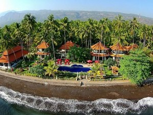 10 days Martial Arts Training Camp in North Bali, Indonesia