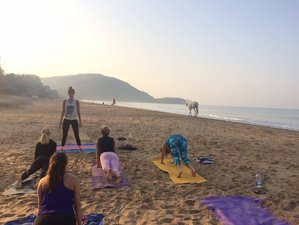 3 Days Resiliency and Empowerment Trauma Informed Yoga Training in Portimão, Portugal