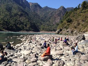 28 Days 300-Hour YTT in Rishikesh, India