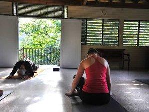 6 Days Purposeful Yoga Retreat in Utuado, Puerto Rico