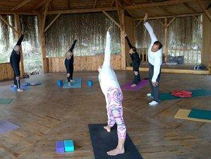 8 Days Meditation and Yoga Retreat in Faralya, Turkey