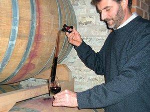 3 Days Italian Wine & Cheese Tour in Venice, Italy