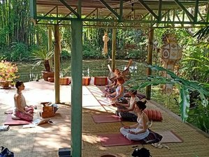 8 Day Medicine for the Soul Retreat with Meditation, Yoga, and Workshops in Chiang Mai