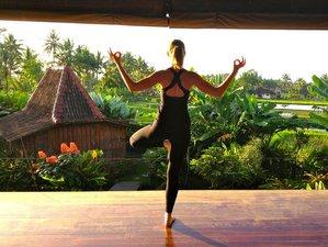 21 Days 200hr Yoga Teacher Training in Bali, Indonesia