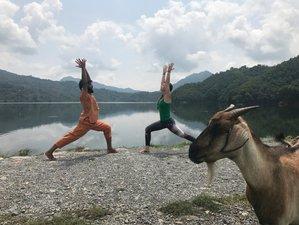 60 jours-500h de formation de professeur de yoga économique au Népal