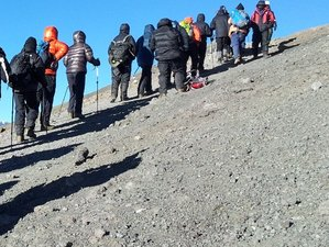 5 Days Marangu Route Kilimanjaro Walking Safari in Tanzania
