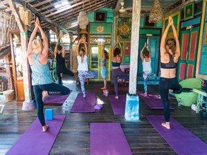 7 Days Budget Yoga and Meditation Holiday in Buleleng, Bali