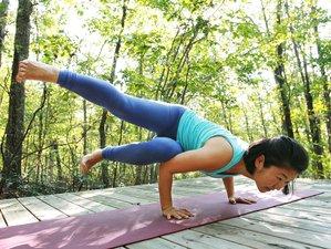 29-Daagse 200-urige Integrale Yoga Docentenopleiding in de VS