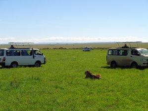 3 Days Budget Masai Mara Safari in Kenya