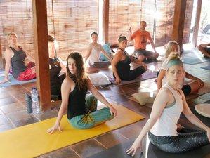 21 Day 200-Hour Yoga Teacher Training in Amed, Bali, with Sadhana Yoga School