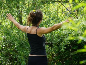 4 Days Unplugged Yoga Retreat Ireland