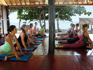 28 Days 200-hour Yoga Teacher Training in Thailand w/ volunteering