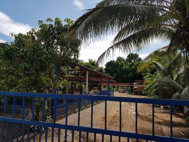 5 Days Countryside Western Boxing and Muay Thai Training in Phetchabun, Thailand