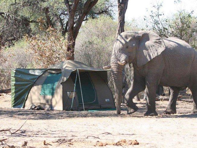 6 Days Luxury Wildlife Safari in Botswana