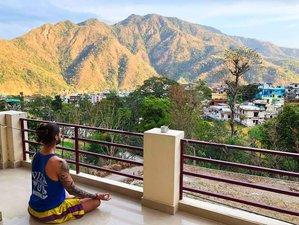 5 Days Sightseeing, Meditation, and Yoga Holiday in Rishikesh, India