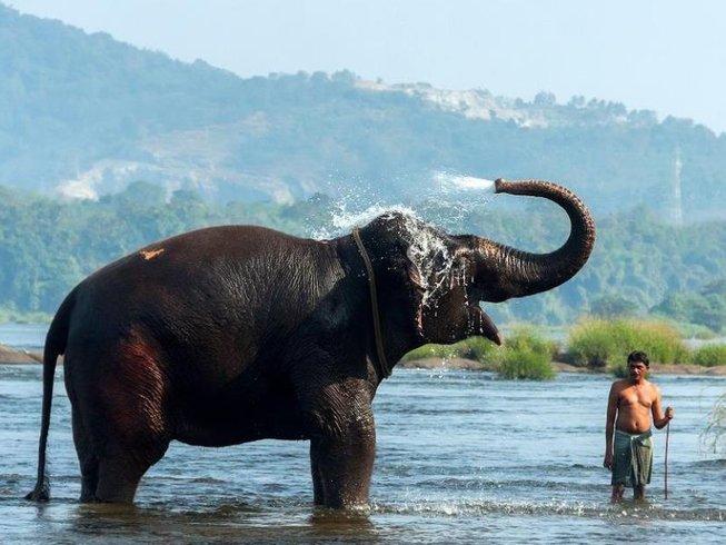 21 días retiro de yoga y rejuvenecimiento corporal en India