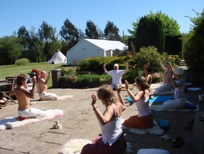 8 Days Rejuvenating Ayurveda Meditation and Yoga Retreat in Swansea, UK