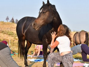 7 Day Transformational Yoga Holiday in Park City, Utah