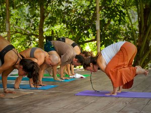 21 Days 200-Hour Hatha Yoga Teacher Training in Monchique, Portugal