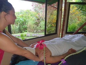 21 Day Naturopathy and Detox Retreat in the Magical Arenal Rainforest, Alajuela
