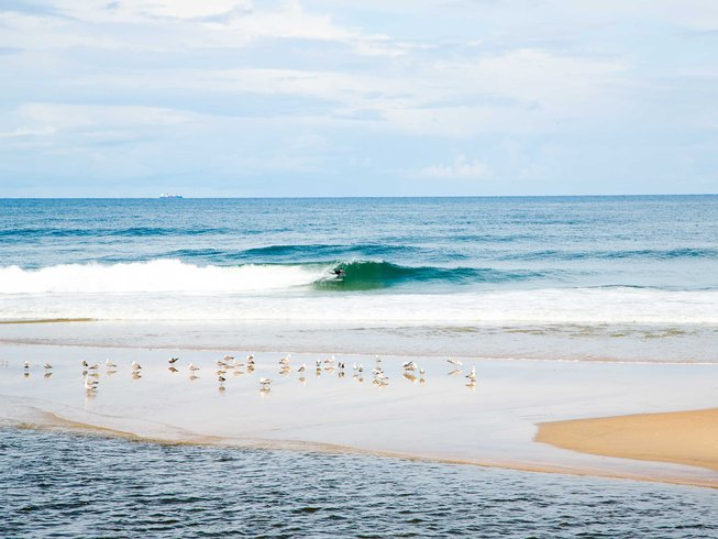 8 Days Surf and Yoga Retreat in Esmoriz, Portugal