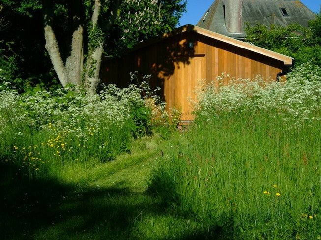 3 Days Transformative  Meditation and Yoga Retreat England, UK