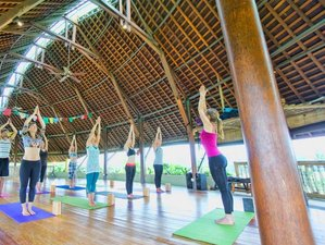 7 Days Bliss Yoga Retreat in Ubud, Bali