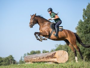 4 Days Jumping Training and Horse Riding Holiday in Galiny, Poland