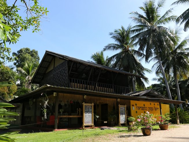 9 jours en stage de yoga et kalarippayat à Koh Phangan, Thaïlande